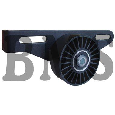 BMS 003